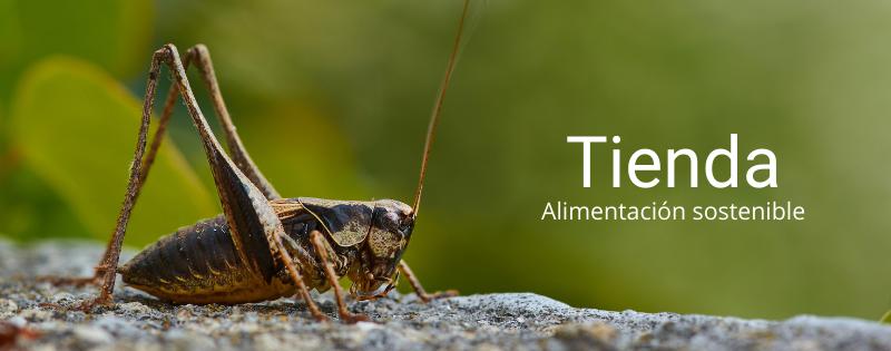 Tienda Insectalia, alimentación sostenible insectos vivos